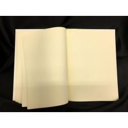Libro per dediche e firme. CM 22x30. Pagine avorio con copertina ecopelle bianca