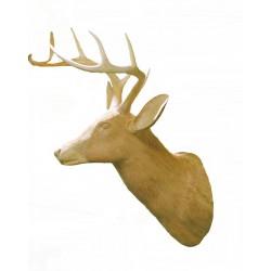 Testa di cervo nobile in legno di tiglio