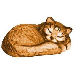 Gatto Dormente