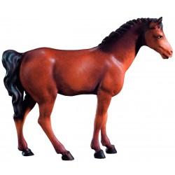 Cavallo Bruno