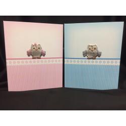 Album portafoto rosa o azzurro con placca argento. CM 20x25