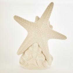 Stella marina ceramica bianca opaca con luce LED. CM 20 batterie escluse