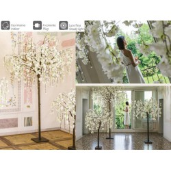 Albero ciliegio bianco con 288 luci LED da interno. H 250