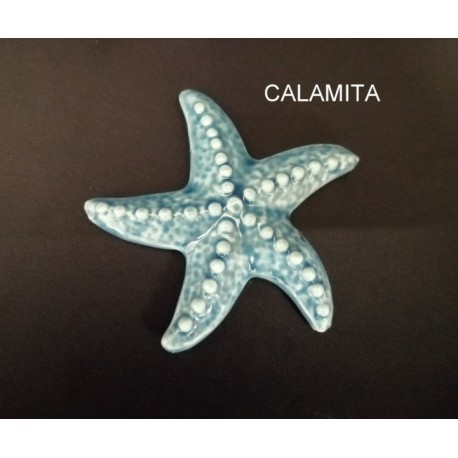 Stella marina porcellana con calamita. CM 7