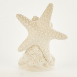 Stella marina ceramica bianca opaca con luce LED. CM 10