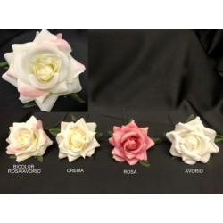 Rosa tessuto. Diam. 6