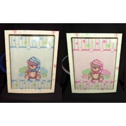 Album da 30 pagine, rosa o azzurro con scatola.