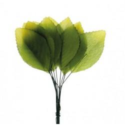 Mazzo 12 foglie in tessuto. CM 4,5 (foglia)