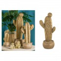 Cactus in magnesia oro H58