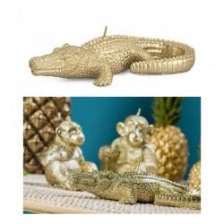 Candela coccodrillo oro L17