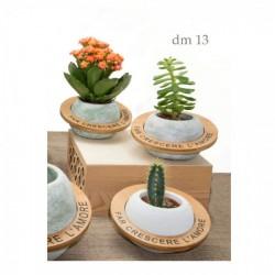 Vaso portapiante in ceramica e legno con frase. Ass 3 colori. H 7 diam.13