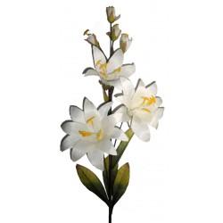 La Lilia bianca in legno