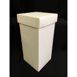 Scatola cartoncino fondo e coperchio avorio CM 20x20 H 40
