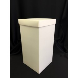 Scatola cartoncino fondo e coperchio avorio CM 12x12 H 24