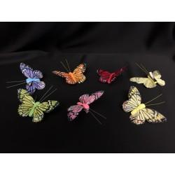 Farfalle in piuma con molletta. Ass 6. CM 9