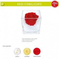 Rosa stabilizzata in vaso vetro 8x8 e pepite.