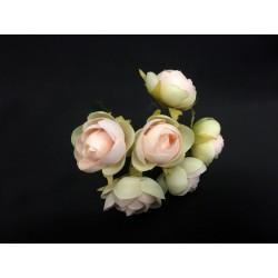 Mazzo 6 rose cipria. Diam. 2.5/3