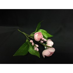 Pick fiore di pesco con foglie. CM 17