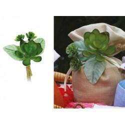 Pick pianta grassa con dettagli juta. CM 10