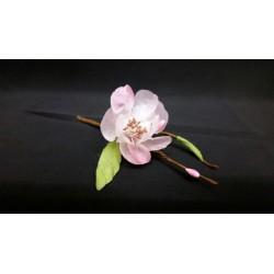 Pick fiore di pesco. CM 12